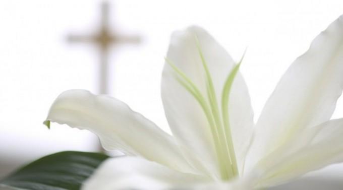 White Birch's Michael Parisi, 51, dies