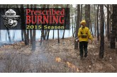 Burning of 100 acres in the Assunpink