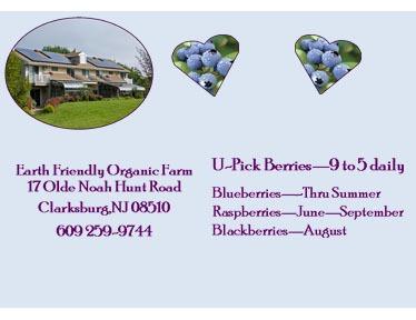 Earth Friendly Organic Farm