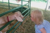 Monmouth County Fair Offers Family Fun 7/22-7/26